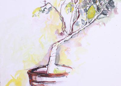 Lemontree, Aquarell auf Karton, 57x56 cm,