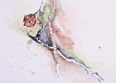 Red rose, Aquarell auf Papier, 51x35,5